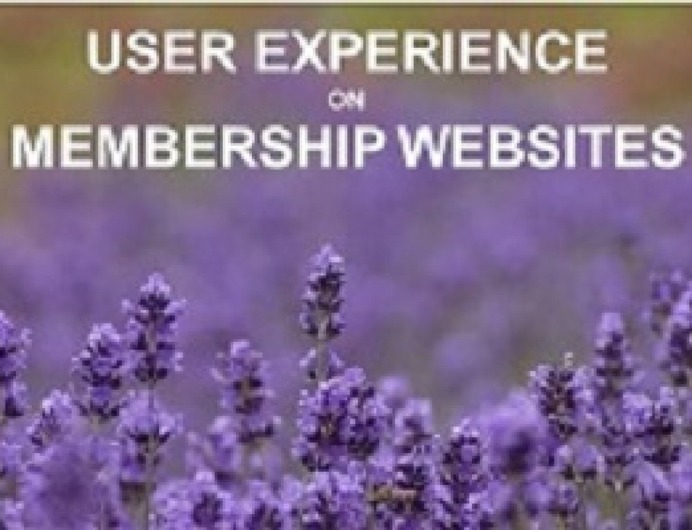 The State of User Experience (UX) on Association websites in the UK