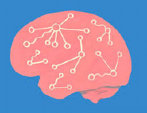 Neuroscience and CPD: Making new connections between Academia and Business